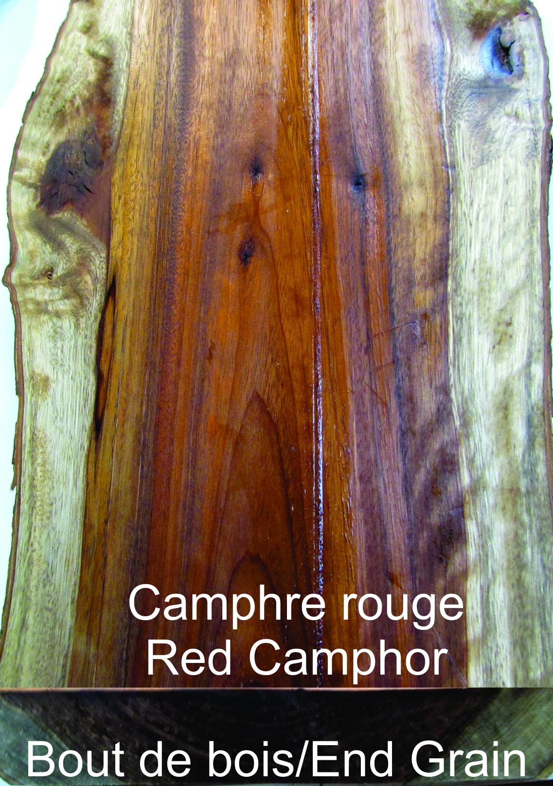 camphre rouge bois. Black Bedroom Furniture Sets. Home Design Ideas